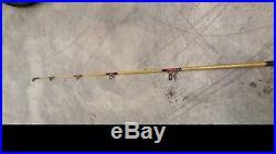 Shakesphere Tiger Rod 2200 Fishing Pole with PENN Reel